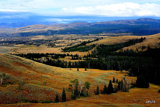Yellowstone by Carrie Putz