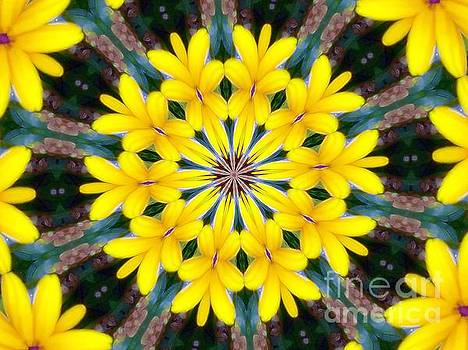 Yelow Floral Burst by Shirley Moravec