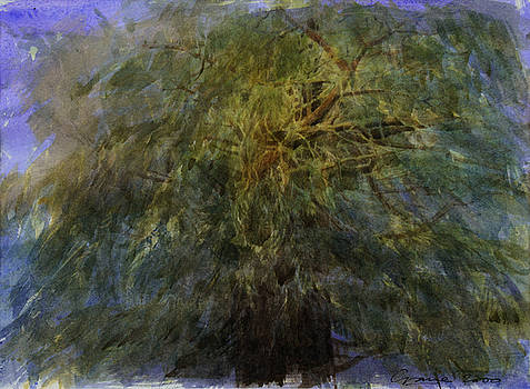 Yew Tree by Andrew Crane