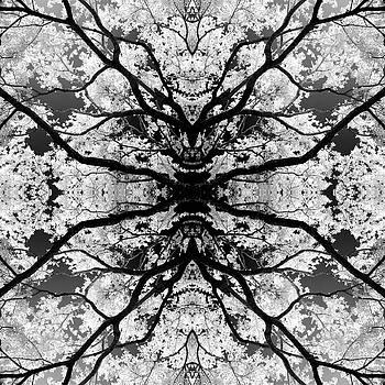 Yggdrasil by Mark Wagoner