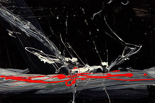 Yin Meets Yang by    Michaelalonzo   Kominsky