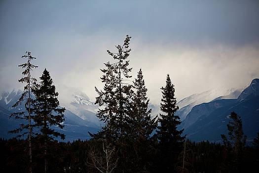 Yoho Mountains British Columbia Canada by Jane Melgaard