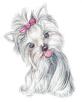 Yorkie Puppy by Morgan Fitzsimons