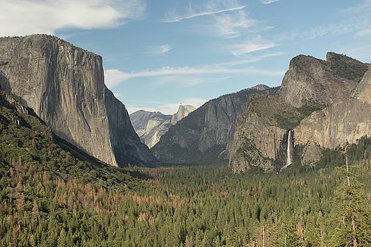 Yosemite  by Chris Burke
