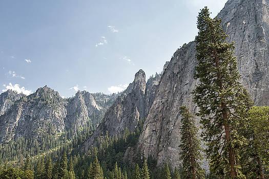 Yosemite Valley Surroundings - Yosemite National Park - California by Bruce Friedman
