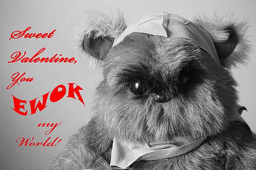 You EWOK my world Valentine by Susan Bordelon
