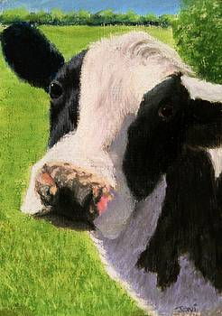 You Looking at Me Cow Painting by Joan Swanson
