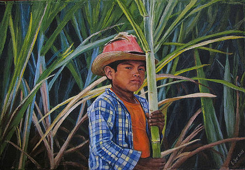 Young cane cutter by Judith Zur