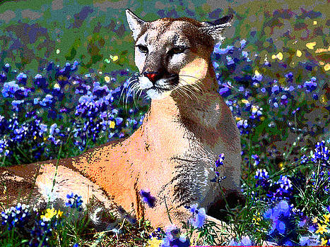Young Cougar by Charles Shoup