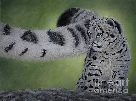 Young Snow Leopard by Sid Ball