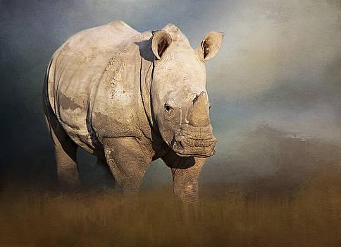 Young white rhino. by Lyn Darlington