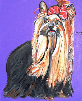 Your Yorkie by Nora Shepley