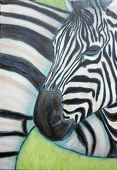 Zebra triptych 1 by Isabelle Ehly