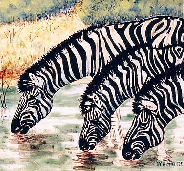 Zebras At the Waterhole by Dy Witt