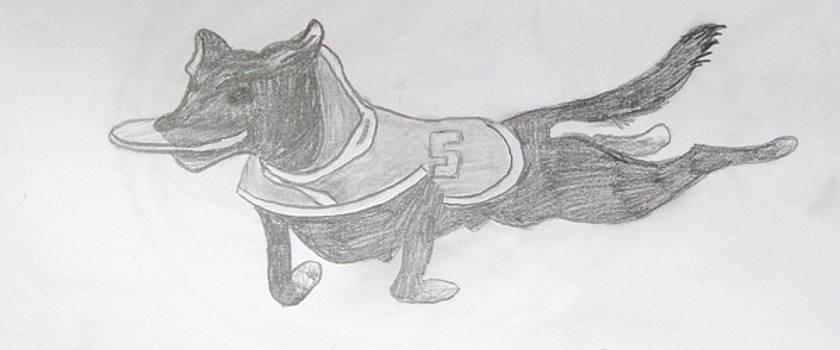 Zeeke the wonder dog by Rebecca Wood