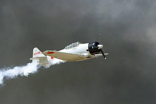 Zero in Flight by Shoal Hollingsworth