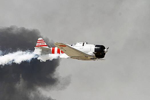 Zero Smoke by Shoal Hollingsworth