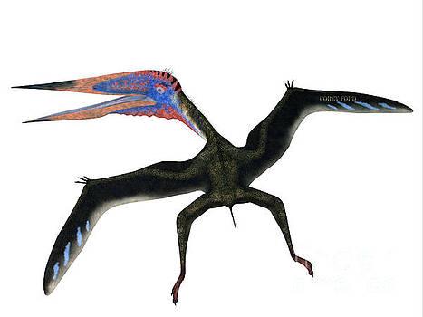 Corey Ford - Zhejiangopterus Flying Pterosaur