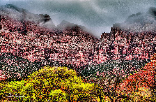Zion National Park II by David Simpson