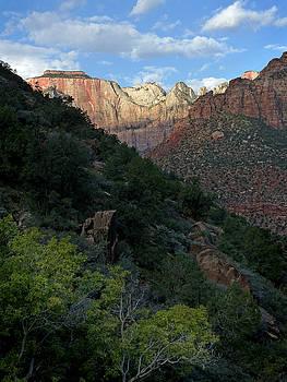 Jeff Brunton - Zion National Park 20