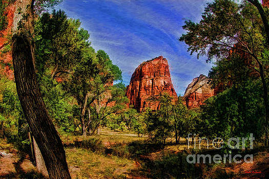Zion Tranquility by Blake Richards