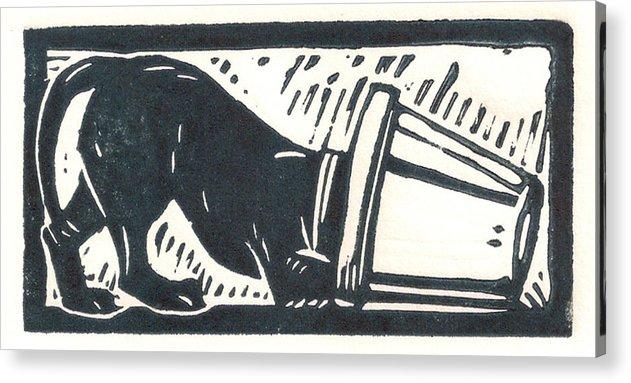 Labrador Retrievers Acrylic Print featuring the drawing Molly Vs. Bucket by Jennifer Harper