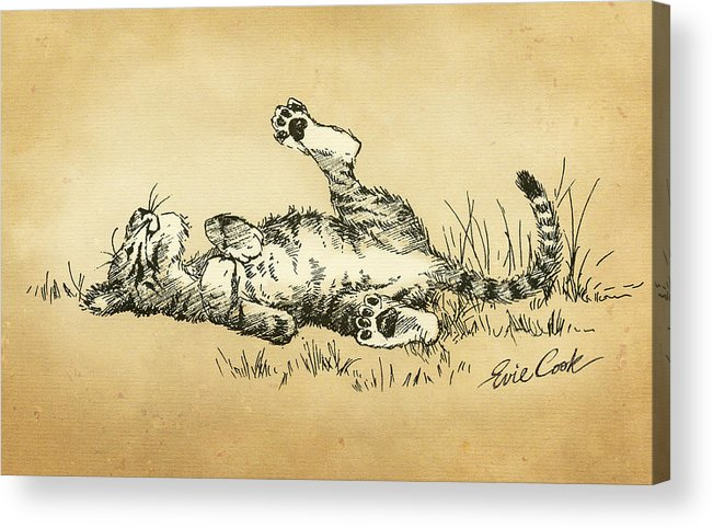 Tiger Acrylic Print featuring the drawing Bliss In The Grass by Evie Cook