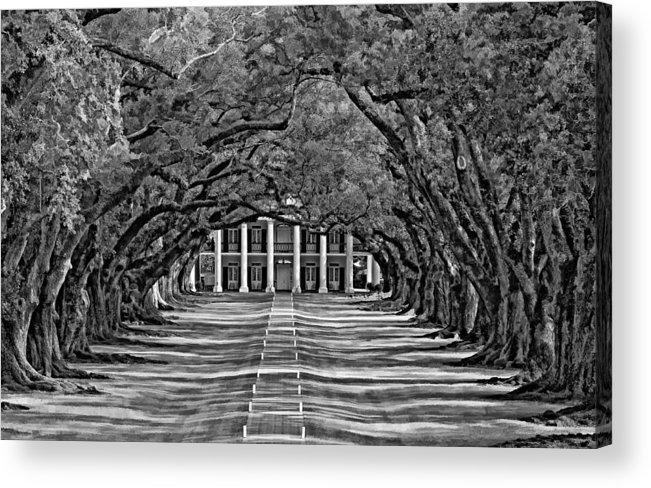 Oak Alley Plantation Acrylic Print featuring the photograph Oak Alley Bw by Steve Harrington