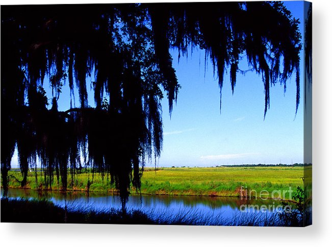 Louisiana Outback Acrylic Print featuring the photograph Sabine National Wildlife Refuge by Thomas R Fletcher