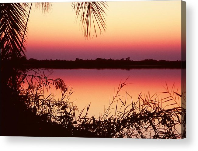 River Acrylic Print featuring the photograph Sunrise On The Okavango Delta by Stefan Carpenter