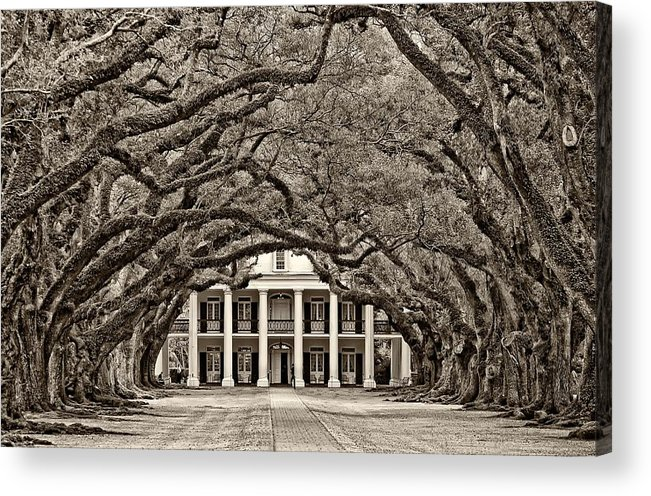 Oak Alley Plantation Acrylic Print featuring the photograph The Old South Sepia by Steve Harrington