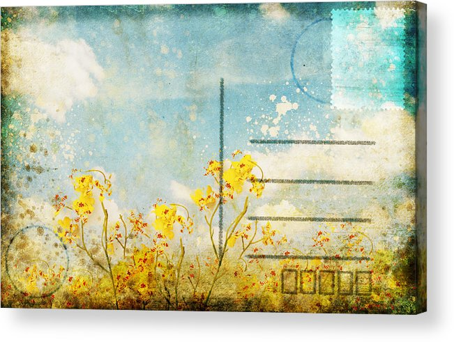 Address Acrylic Print featuring the photograph Floral In Blue Sky Postcard by Setsiri Silapasuwanchai