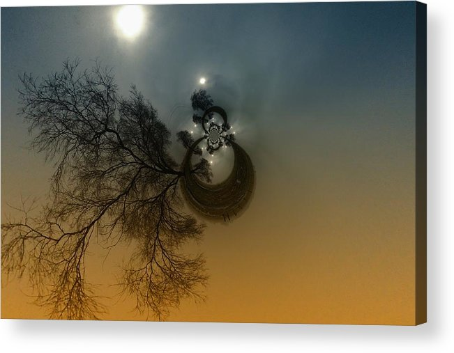 Abstract Acrylic Print featuring the photograph A Tree In The Sky by Jeff Swan