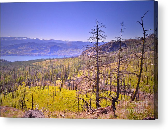 Mountain Acrylic Print featuring the photograph A View From Okanagan Mountain by Tara Turner