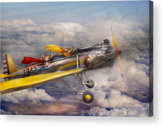 Pig Acrylic Print featuring the photograph Flying Pig - Plane - The Joy Ride by Mike Savad