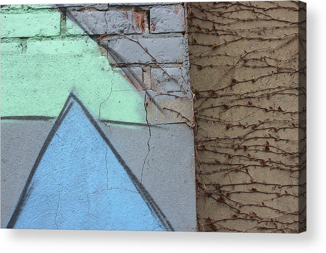 Graffitti Acrylic Print featuring the photograph Growing Across by Natalie Lizza