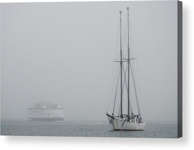 Fog Acrylic Print featuring the photograph Into The Fog by Steve Myrick