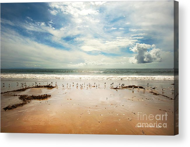 Gaviota Acrylic Print featuring the photograph It Was A Sunny Day At The Beach From The Book My Ocean by Artist and Photographer Laura Wrede