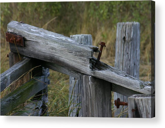 Left Behind At The Marsh Acrylic Print featuring the photograph Left Behind At The Marsh by Denyse Duhaime