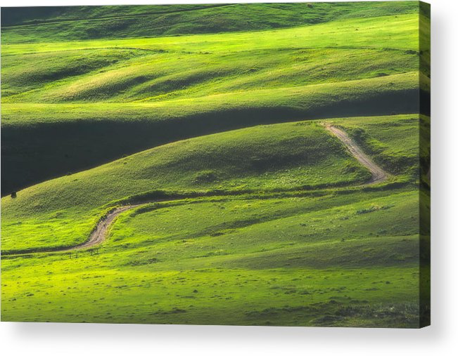 Green Acrylic Print featuring the photograph Luminous Green by Joan Herwig