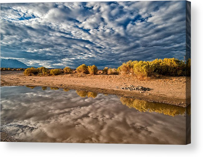 Puddle Acrylic Print featuring the photograph Mud Puddle by Cat Connor