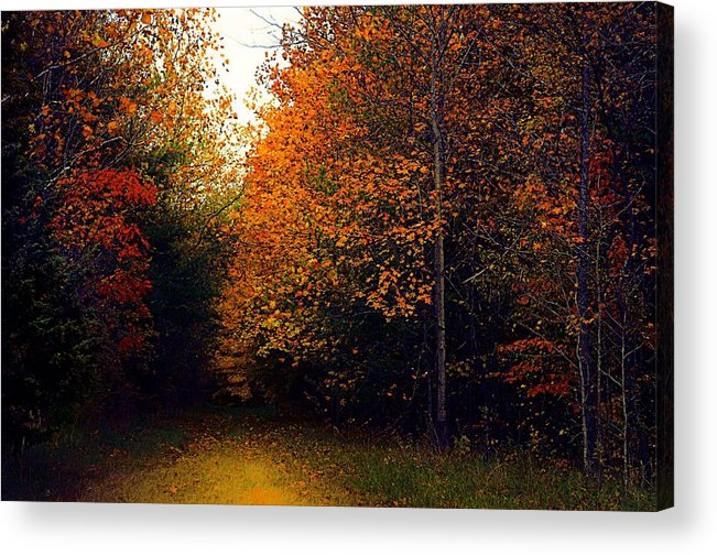 Autumn Acrylic Print featuring the photograph On Jan's Farm by Julie Dant