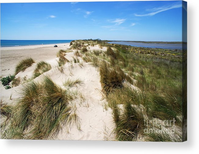 Scenics Acrylic Print featuring the photograph Sand Dunes Separation by Sami Sarkis