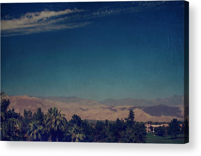 Palm Desert Acrylic Print featuring the photograph They Can't Touch Us by Laurie Search