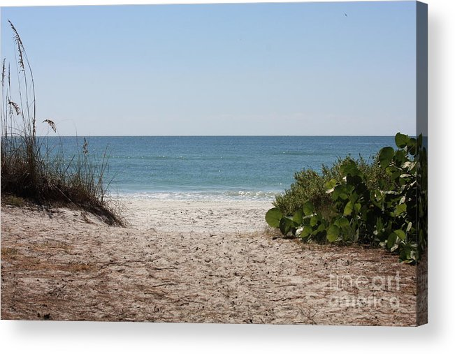 Beach Acrylic Print featuring the photograph Welcome To The Beach by Carol Groenen