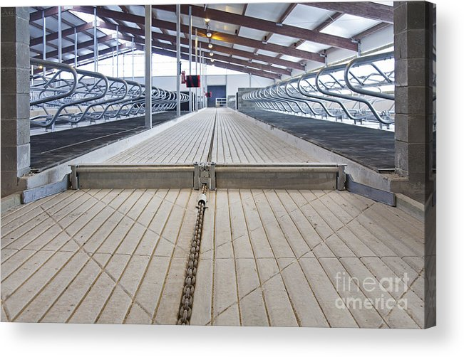 Agricultural Acrylic Print featuring the photograph Cowshed Dung Scraper by Jaak Nilson