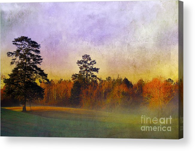 Mist Acrylic Print featuring the photograph Autumn Morning Mist by Judi Bagwell
