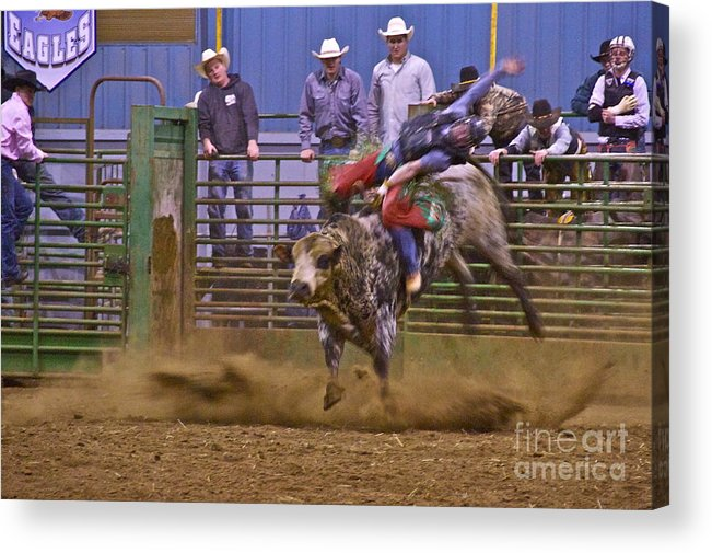 Photography Acrylic Print featuring the photograph Bull Rider 1 by Sean Griffin
