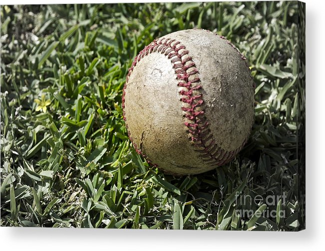 Baseball Acrylic Print featuring the photograph Cure For Spring Fever by Gwyn Newcombe