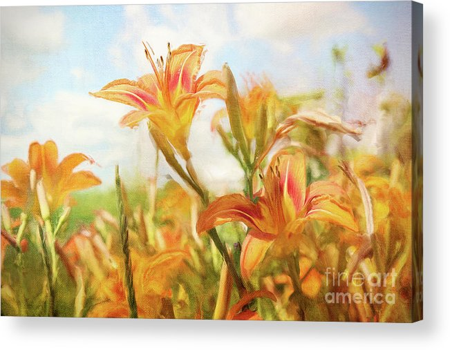 Art Acrylic Print featuring the photograph Digital Painting Of Orange Daylilies by Sandra Cunningham